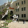 Al-Arab Medical University