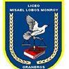 Liceo Profesor Misael Lobos Monroy C8