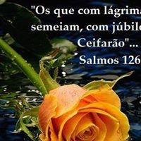 Fátima  Santos Souza