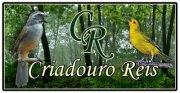 Mauricio  Criadouro Reis